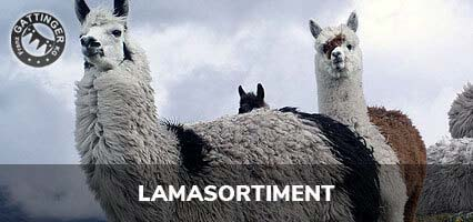 Lamasortiment