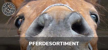 Pferdesortiment
