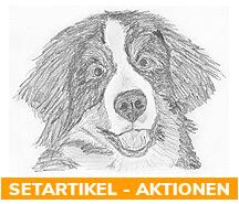 x% Hundescheren - Aktionen