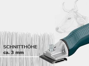 ca. 3 mm Schnitthöhe (Standard)
