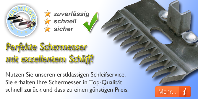 Schleif- & Reparaturservice